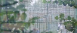 Still from Standoff Films: Campsfield House: An Immigration Removal Centre'
