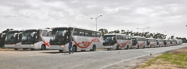 Dozens of buses imported from China $80 million dollars